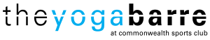 yogabarrelogoblack